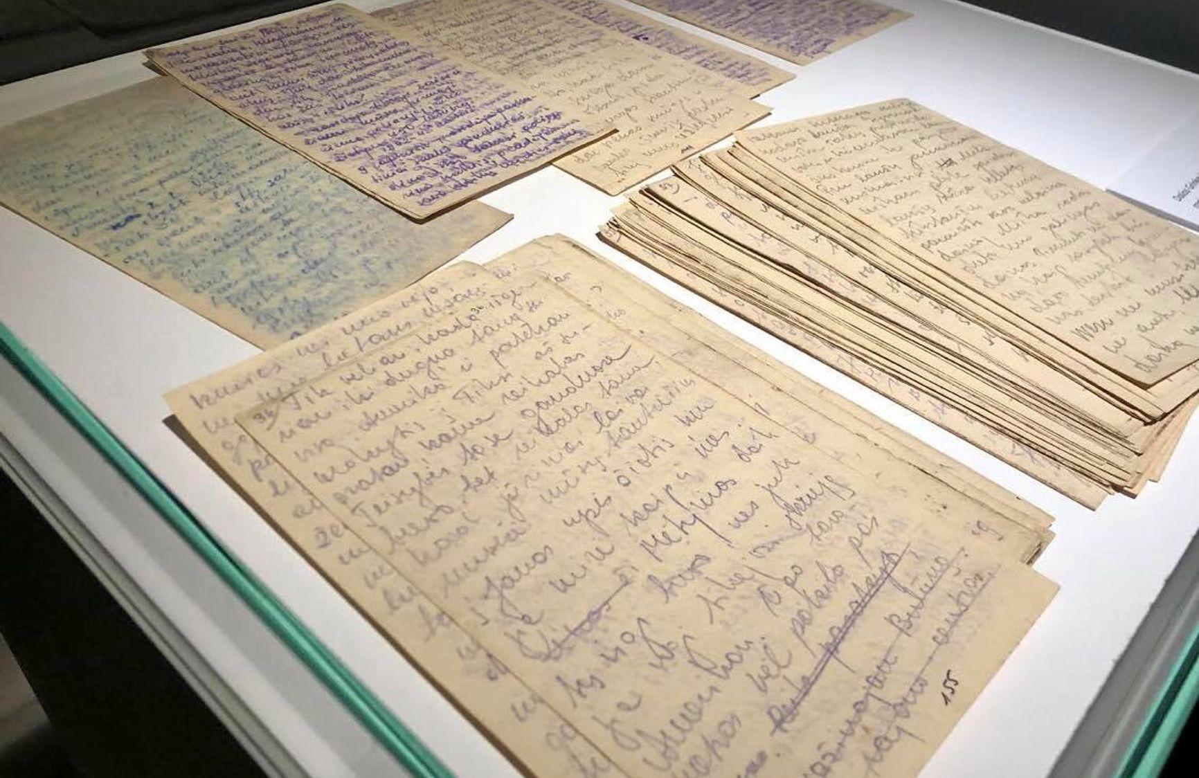 Дневник Дали Гринкевичуте. Национальный музей Литвы